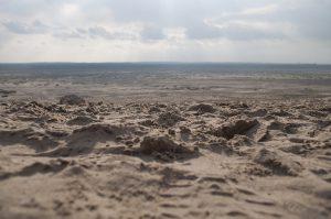 Jak zwiedzać Pustynię Błędowską